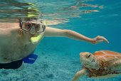 cook islands vacation, snorkeling